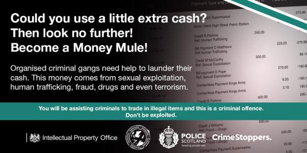 Money Mule Twitter